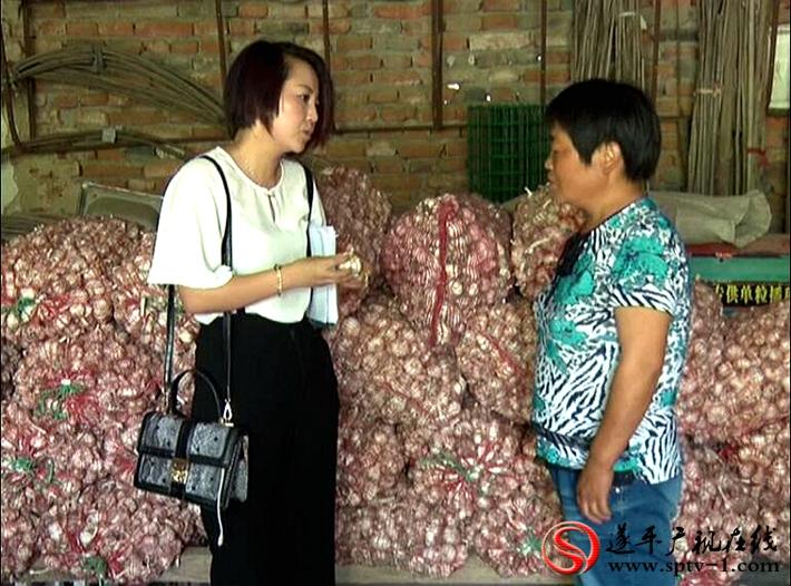 上图:记者在采访蒜农。