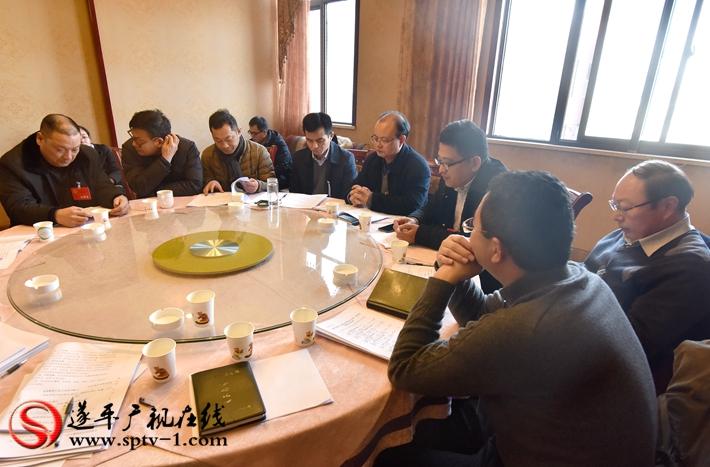 县委办公室主任何方,副县长戚斌参加花庄,嵖岈山风景区代表团讨论.