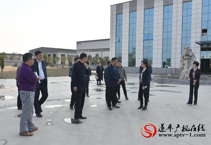 上图:县委书记何冬、县长侯蕴等领导在派克食品包装项目施工现场。